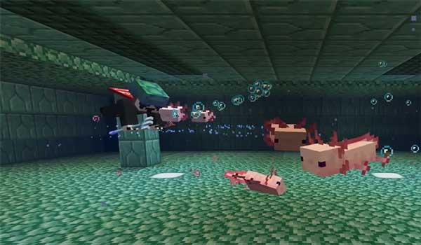 axolotl minecraft 1 17